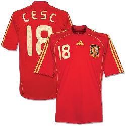 20091119021157-camiseta-adidas-de-la-seleccion-espanola-de-futbol-campeona-de-europa.jpg