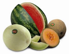 20100503143052-copy-of-melons-1-.jpg