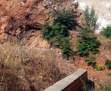 20081029120434-cueva.jpg
