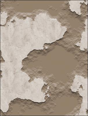 20100112131118-pared-1-.jpg